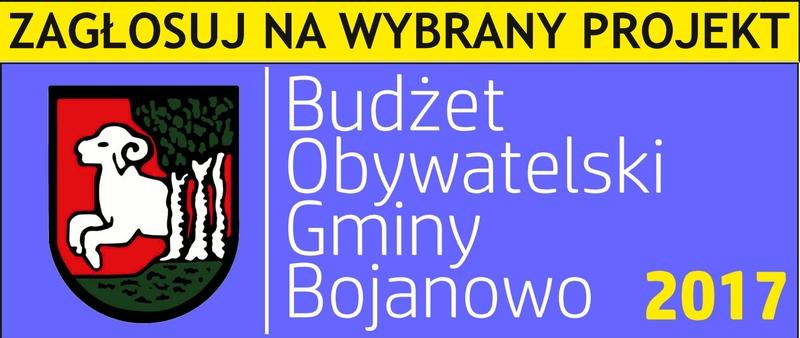- budzet_obywatelski_2017_glosowanie_ikona.jpg